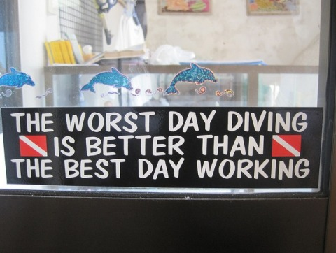 better than the best day working diving